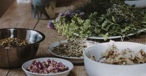 Uso de Hierbas Aromáticas   Grillos Jardinería