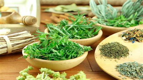 ¿Utilizas hierbas en tu cocina?   ConstruArte, C.A.