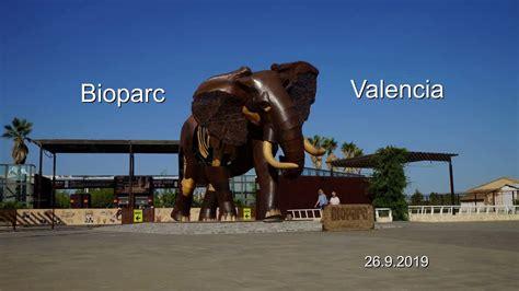 Valencia Bioparc   YouTube