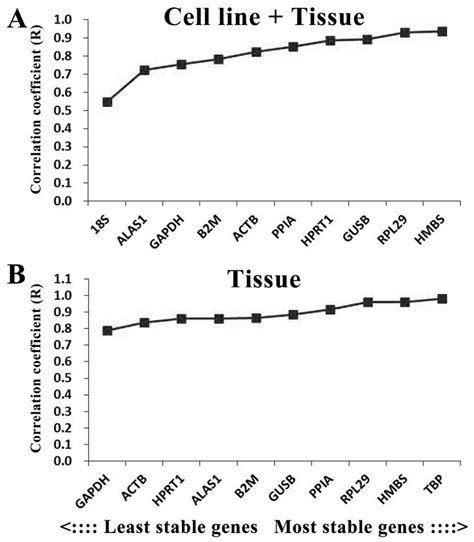 Validation of internal reference genes for relative ...