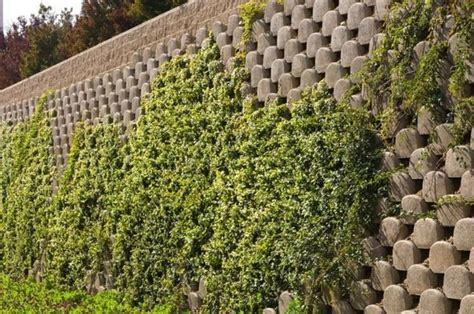 valla de bloques de hormigón moderna en 2020 | Muros de ...