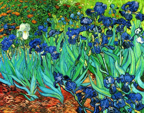 Van Gogh Irises Fine Art Giclee Canvas Print 24  x18     eBay