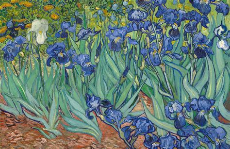 Van Gogh Irises Wallpaper Mural | MuralsWallpaper