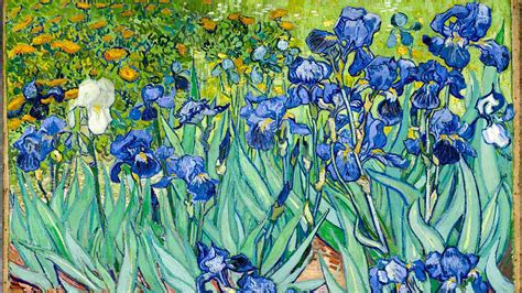 Van Gogh Museum, Amsterdam   Book Tickets & Tours ...