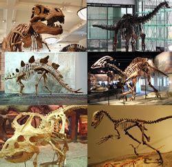 Various dinosaurs.png