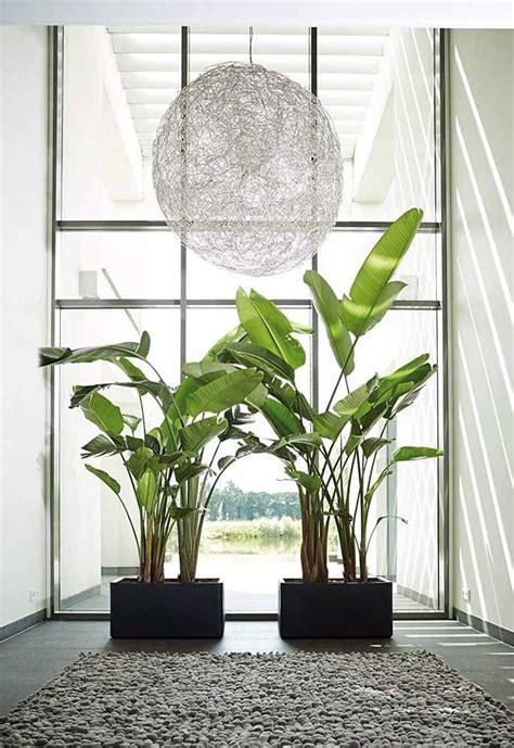 Vasos Decorativos: Descubra 60 Modelos e Ideias de ...