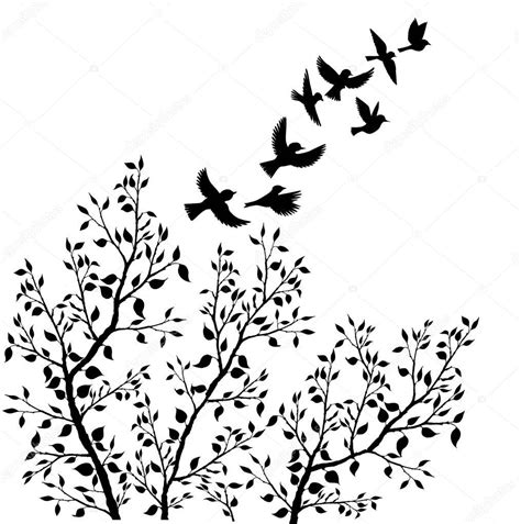 Vector: dibujo pajaros volando   Vector siluetas de aves ...