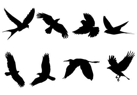 Vector silueta de aves volando   Descargar Vectores Gratis ...