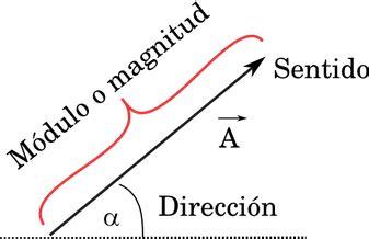 Vectores | ¡Física con nosotros!