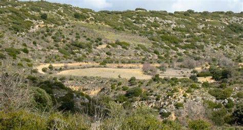 Vegetación mediterráneo continental
