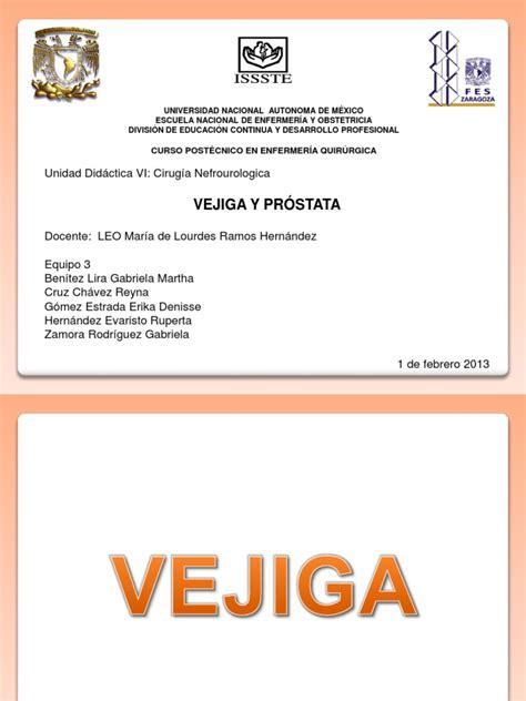 Vejiga y Próstata | Cancer de prostata | Vejiga urinaria ...