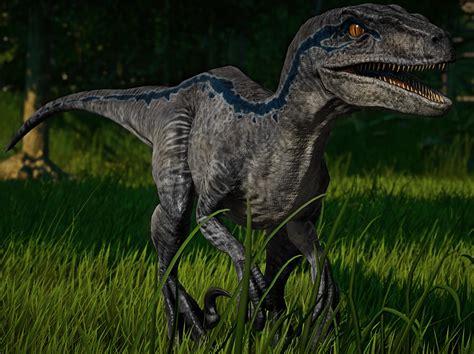 Velociraptor Blue : jurassicworldevo