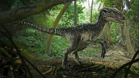 Velociraptor Blue  | Wiki | Jurassic Park Amino Amino