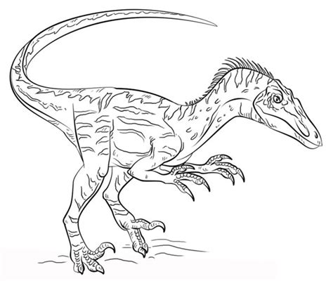 velociraptor dibujo facil para niños