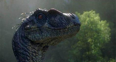 Velociraptor   Dinopedia   the free dinosaur encyclopedia