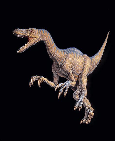 Velociraptor Dinosaur Photograph by Joe Tucciarone