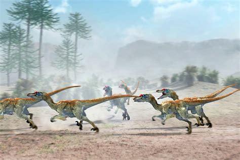 Velociraptor Dinosaurs Photograph by Jose Antonio PeÑas