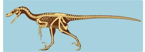 Velociraptor, el malo de la película   Tendenzias.com
