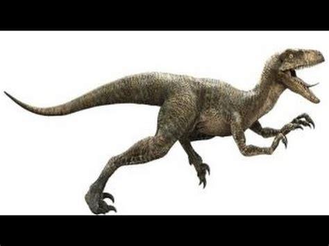 Velociraptor | Enciclopedia sobre Dinosaurios   YouTube