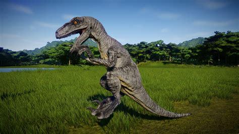 Velociraptor in 2020   Jurassic world dinosaurs, Jurassic ...