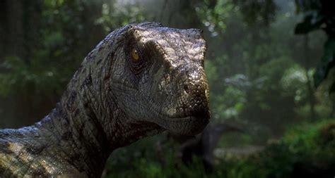 Velociraptor  Jurassic Park, The Lost World, Jurassic Park ...