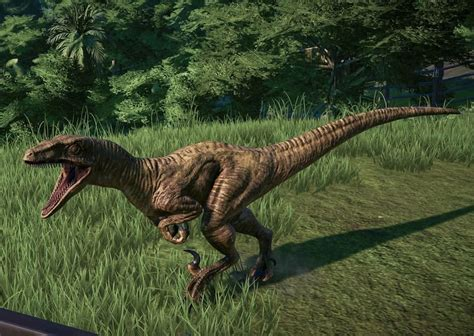 Velociraptor | Jurassic park world, Jurassic world ...