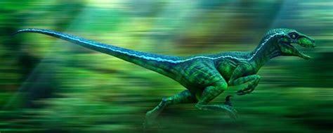 VELOCIRAPTOR, la velocidad representada por un animal