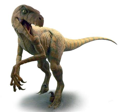 Velociraptor   Mille Animali