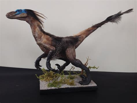 Velociraptor Mongoliensis sculpture  with real feathers ...