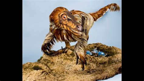 Velociraptor. mongoliensis Sound Effects   YouTube