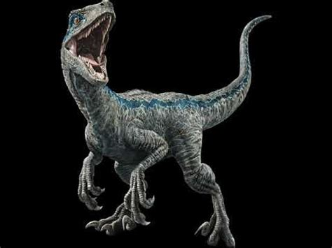 Velociraptor Mongoliensis Sounds J.P   YouTube