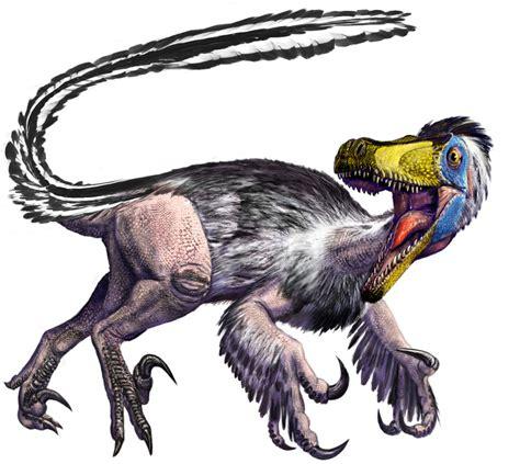 Velociraptor   Nonciclopedia