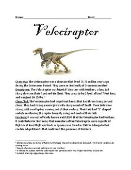 Velociraptor   Raptor Dinosaur informational article facts ...
