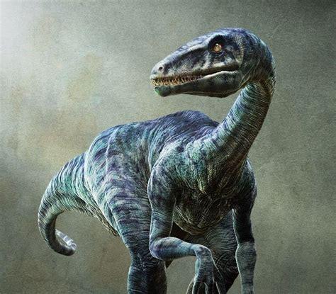 velociraptor real dinosaur fossils