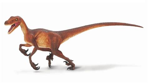 Velociraptor Sound Effects   YouTube