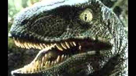 Velociraptor Sounds   YouTube