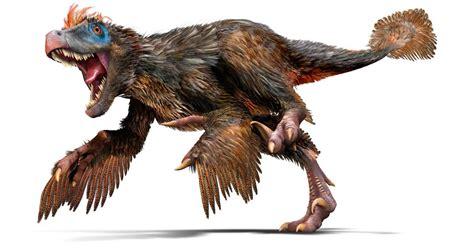 Velociraptor   Velociraptor Facts   DK Find Out