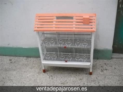 Venta de pajaros en Punta Umbría , Huelva   Venta De Pajaros