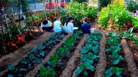 Ventajas de tener un cultivo propio