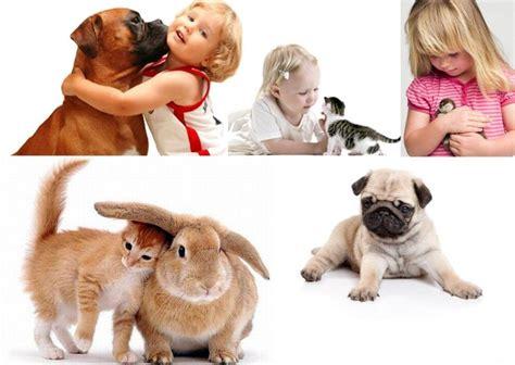 Ventajas para la salud de tener una Mascota en casa