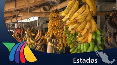 Veracruz produce gran variedad de plátanos | Noticias de ...