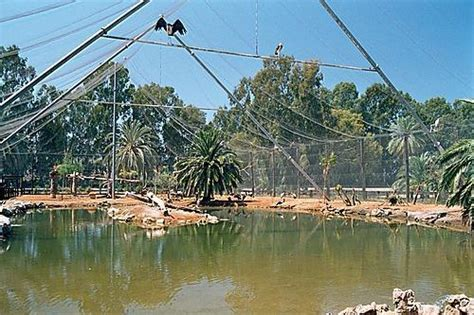 Vergel Safari Park   Municipality of Ondara