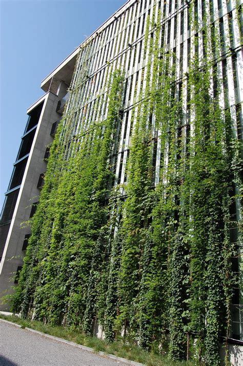 Vertical green wall | Fachada verde, Pared verde ...
