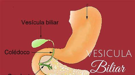 Vesícula Biliar Síntomas y Remedios | Vesicula biliar ...