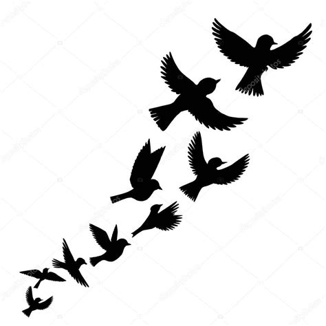 vetorial, silhuetas de pássaros a voar — Vetor de Stock ...