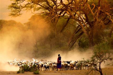 Viajar a Kenia de forma personalizada | Viajes Etnias
