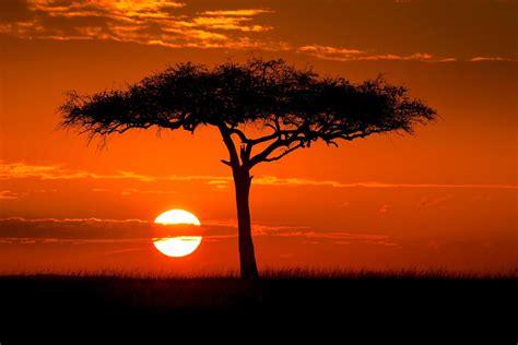 Viajar a Kenia   Lonely Planet