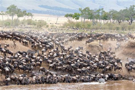 Viaje a Kenya y Tanzania. Grupo privado a partir de 2 ...