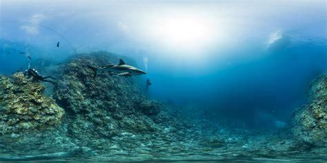 Viaje alucinante al fondo del mar   Blog Viajero Astuto ...
