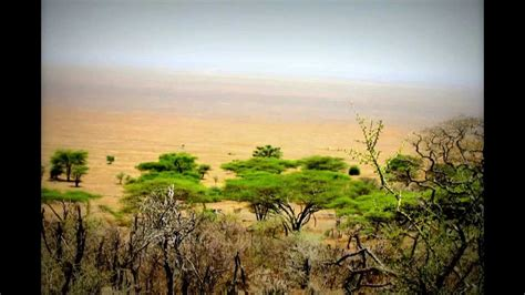 Viaje de safari a Kenia/ Tanzania  paisajes , 2013  www ...